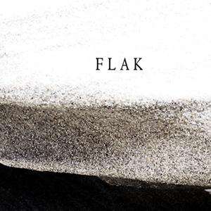 flak 300w square